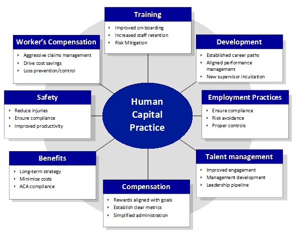 the-als-group-nj-human-capital-practice-wheel